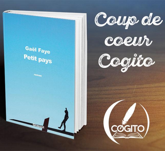 Les Chroniques De Cogito Petit Pays De Gael Faye